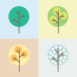Cards to Trees: Our Path to Planting 1 Million Trees | Paper