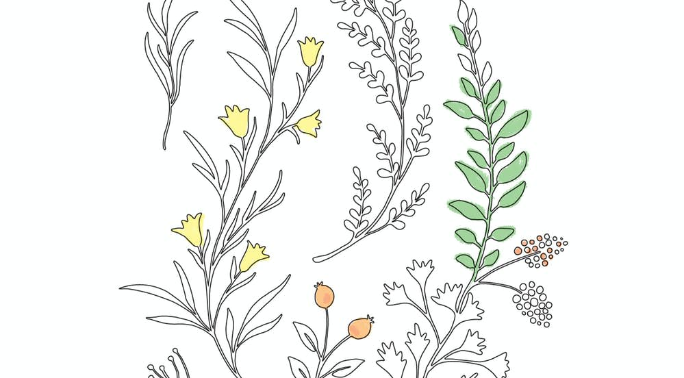 Free Printable Greeting Cards Coloring Book Paper Culture